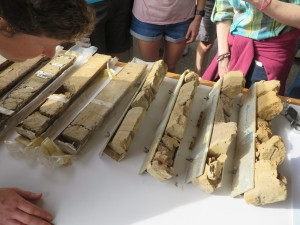 Conference participants examine cores from the Cauca River.